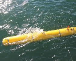 Autonomous Underwater Vehicle Bluefin 21