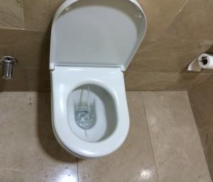 Tandas Moden dan bersih terdapat dimerata tempat dengan ciri design menepati keperluan muslimin. Lihat lantai tandas sentiasa kering kerana air tak mungkin jatuh kelantai